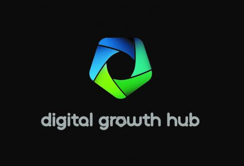 What is the Digital Growth Hub?